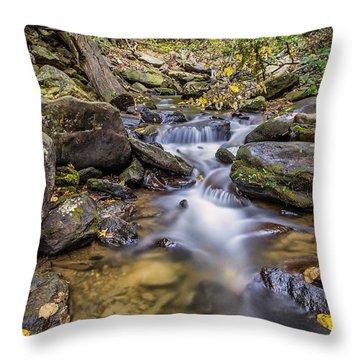Fall Arrives At Amicalola Falls Throw Pillow