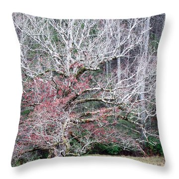 Fall At Cades Cove Throw Pillow