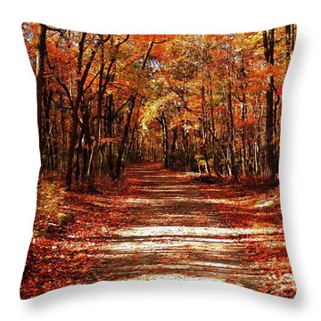 Throw Pillow featuring the photograph Fall At Cheesequake by Raymond Salani III