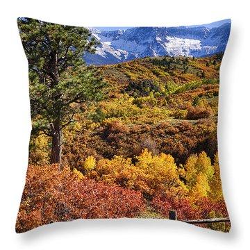 Fall At Dallas Divide Throw Pillow