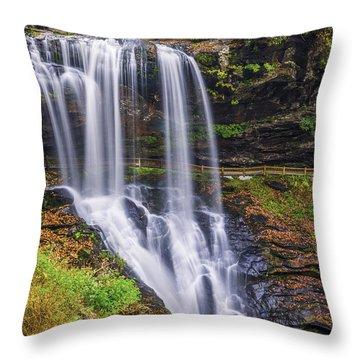 Dry Falls In Autumn Throw Pillow