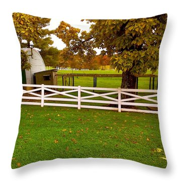 Fall At Eisenhower Farm Throw Pillow