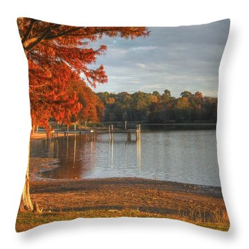 Throw Pillow featuring the photograph Fall At Georgia Lake by Donald Williams