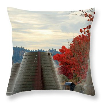 Harborside Fountain Park II Throw Pillow