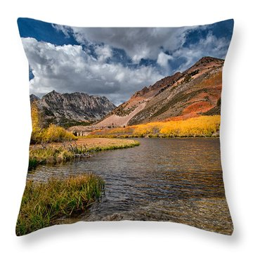 Fall At North Lake Throw Pillow by Cat Connor