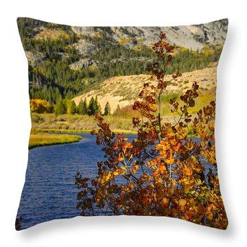 Fall At North Lake Throw Pillow by Joe Doherty