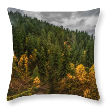 Fall At Silver Falls Throw Pillow