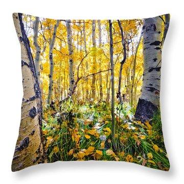 Fall At Silver Lake Throw Pillow