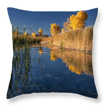 Fall At The Canal Throw Pillow