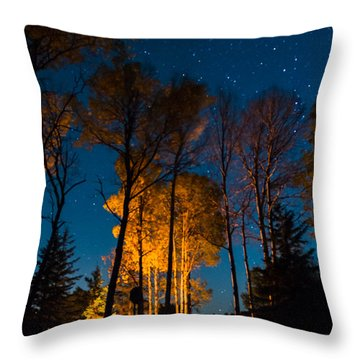 Fall At The Ponderosa Throw Pillow