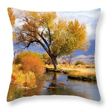 Throw Pillow featuring the photograph Fall At The River by Marilyn Diaz