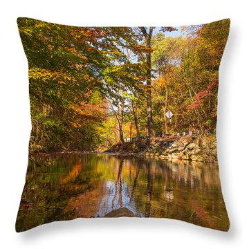 Throw Pillow featuring the photograph Fall At Valley Creek  by Rima Biswas