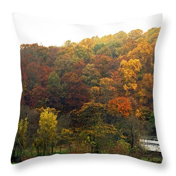 Fall At Valley Forge Throw Pillow