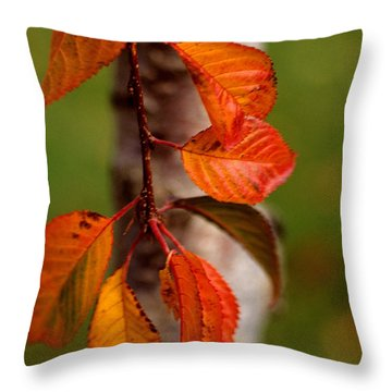Fall Beauty Throw Pillow by Sharon Elliott