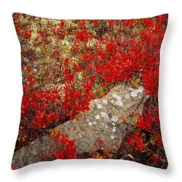 Fall Blueberries And Moss Throw Pillow