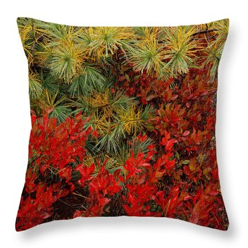 Fall Blueberries And Pine-h Throw Pillow