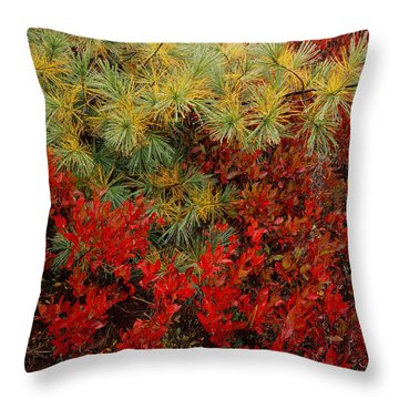 Fall Blueberries And Pine Throw Pillow