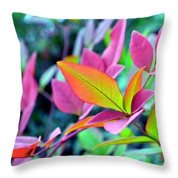 Fall Brilliance Throw Pillow