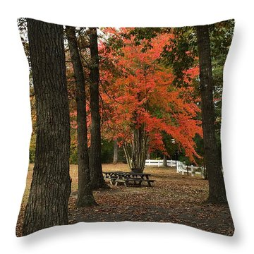 Fall Brings Changes  Throw Pillow