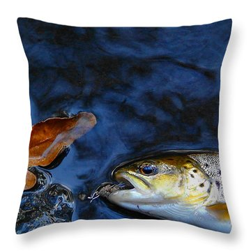 Fall Brown Trout Throw Pillow by Thomas Young