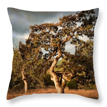 Throw Pillow featuring the photograph Fall Closing In by Julia Hassett