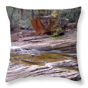 Fall Color 6419 Throw Pillow