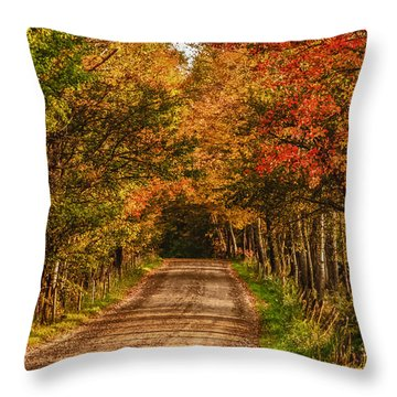 Throw Pillow featuring the photograph Fall Color Along A Dirt Backroad by Jeff Folger
