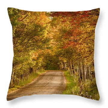 Throw Pillow featuring the photograph Fall Color Along A Peacham Vermont Backroad by Jeff Folger