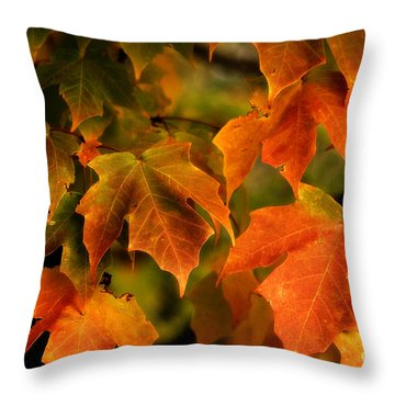 Fall Color Throw Pillow by Melissa Petrey