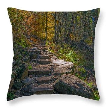 West Fork At Oak Creek Throw Pillow