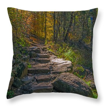 West Fork At Oak Creek Throw Pillow