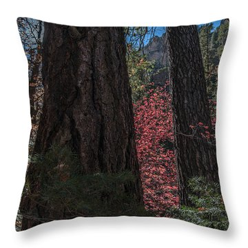 West Fork Perspective Throw Pillow