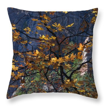 West Fork Tapestry Throw Pillow