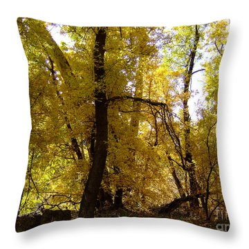 Fall Colors 6169 Throw Pillow