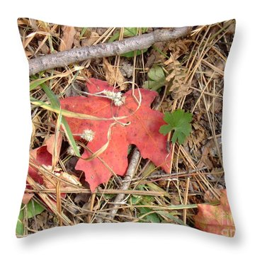 Fall Colors 6307 Throw Pillow