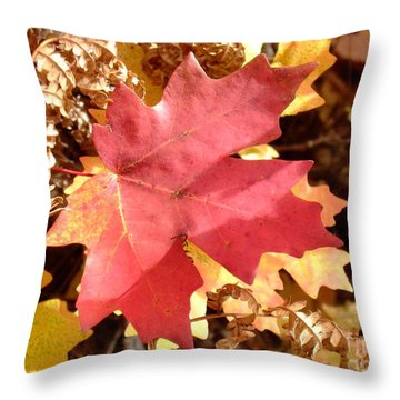 Fall Colors 6313 Throw Pillow