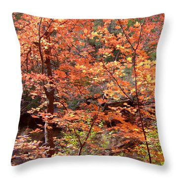 Fall Colors 6335 Throw Pillow