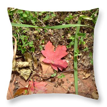 Fall Colors 6342 Throw Pillow