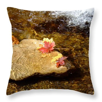 Fall Colors 6348 Throw Pillow