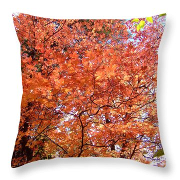 Fall Colors 6357 Throw Pillow