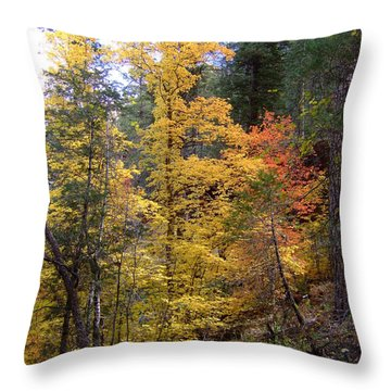 Fall Colors 6368 Throw Pillow