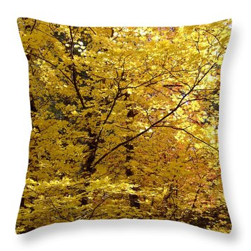 Fall Colors 6371 Throw Pillow