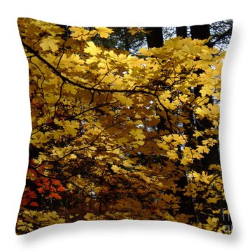Fall Colors 6372 Throw Pillow
