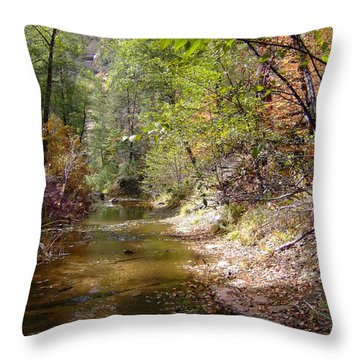 Fall Colors 6379 Throw Pillow