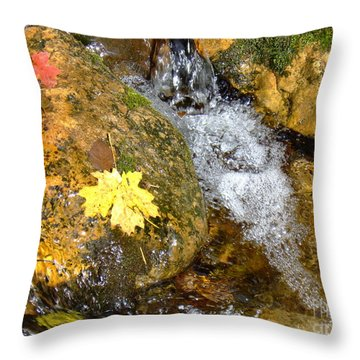 Fall Colors 6389 Throw Pillow