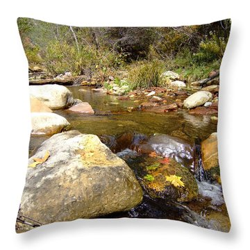 Fall Colors 6390 Throw Pillow