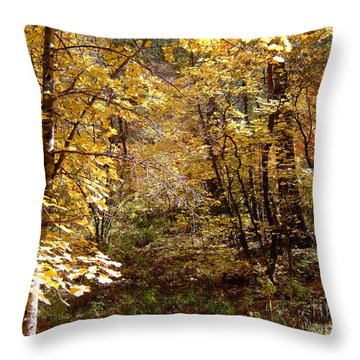 Fall Colors 6405 Throw Pillow