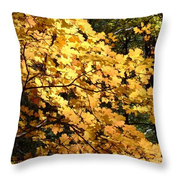 Fall Colors 6407 Throw Pillow