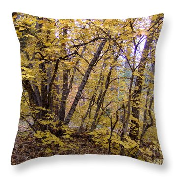 Fall Colors 6435 Throw Pillow