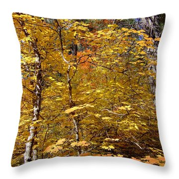 Fall Colors 6446 Throw Pillow